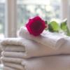バラ,お風呂,bath