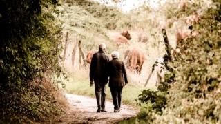 夫婦の歩み,人生